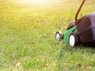 Lawn Services: a Great Way to Boost Your Home and Lifestyle
