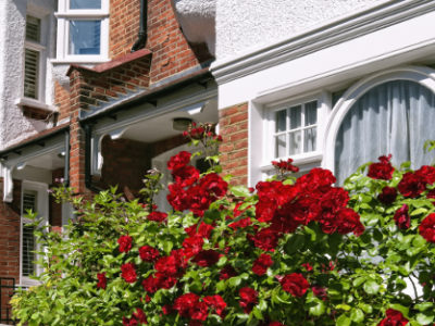 5 Colour Schemes to Consider When You Paint Your Home Exterior