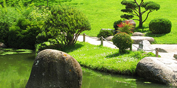 Landscaping in Wirral