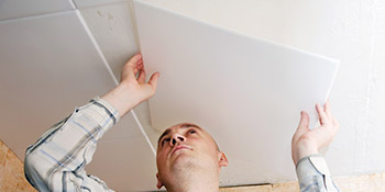 Plasterboard ceilings